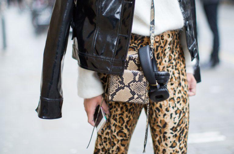 leopardikuosi