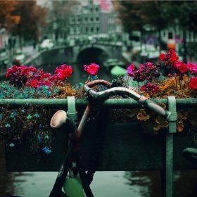 Reisetips: Stedene du må se i Amsterdam