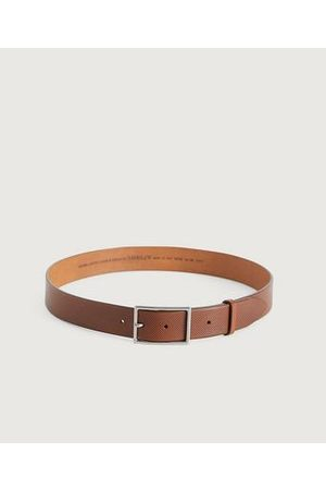 Saddler Belte SDLR Male Belt