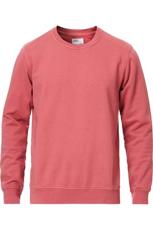 Colorful Standard Classic Organic Crew Neck Sweat Raspberry Pink