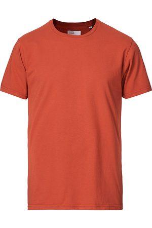 Colorful Standard Classic Organic T-Shirt Dark Amber