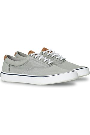 Sperry Striper II Canvas Sneaker Grey