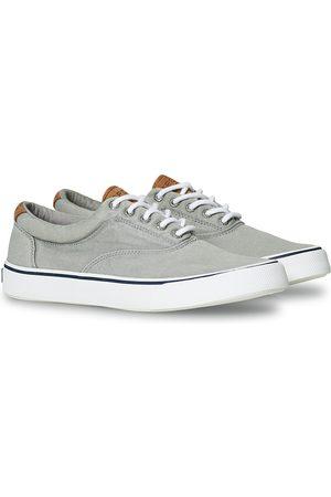 Sperry Striper II Canvas Sneaker Grey