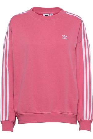 adidas Adicolor Classics Over D Sweatshirt W Sweat-shirt Genser Rosa