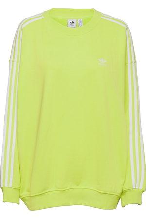 adidas Adicolor Classics Over D Sweatshirt W Sweat-shirt Genser Grønn