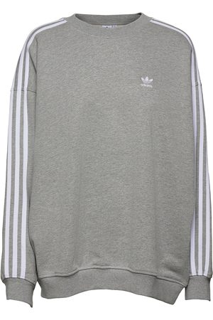 adidas Dame Sweatshirts - Adicolor Classics Over D Sweatshirt W Sweat-shirt Genser Grå