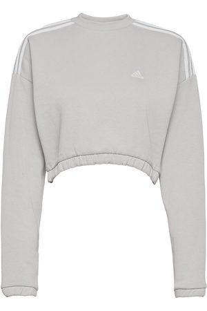 adidas Dame Sweatshirts - Crop Crew Sweatshirt W Sweat-shirt Genser Grå