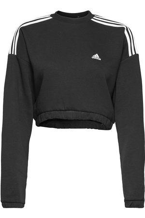 adidas Crop Crew Sweatshirt W Sweat-shirt Genser