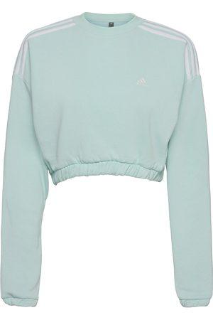 adidas Dame Sweatshirts - Crop Crew Sweatshirt W Sweat-shirt Genser Blå