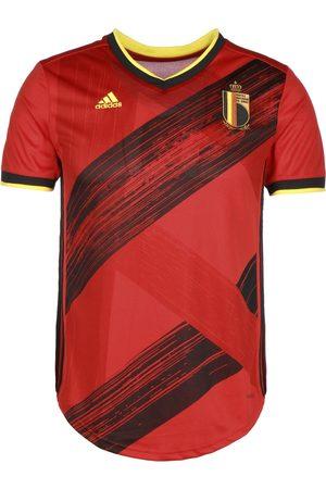 adidas Trikot 'RBFA Belgien Home EM 2020