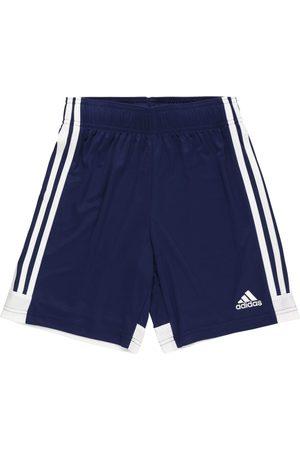 adidas Sportsbukser 'TASTIGO19