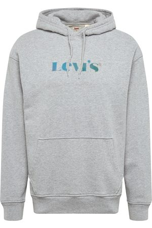Levi's Herre Sweatshirts - Sweatshirt 'T2 RELAXD GRAPHIC