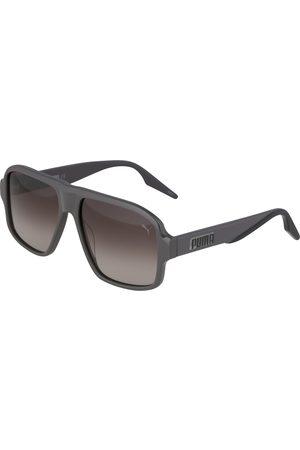 PUMA Solbriller