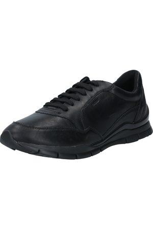 Geox Sneaker low 'Sukie