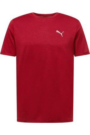 PUMA Herre Skjorter - Funksjonsskjorte