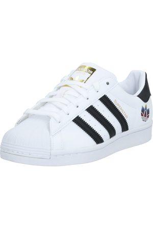 adidas Sneaker low 'Superstar