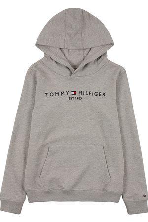 Tommy Hilfiger Gutt Sweatshirts - Sweatshirt