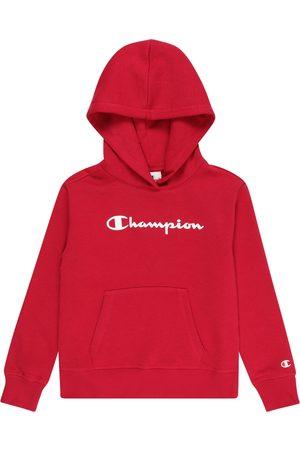 Champion Authentic Athletic Apparel Sweatshirt