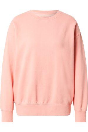AMERICAN EAGLE Dame Sweatshirts - Sweatshirt