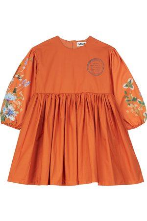 Molo Caja floral cotton poplin dress