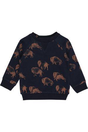 Noppies Gutt Sweatshirts - Sweatshirt 'Roanoke