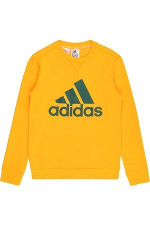 adidas Jente Treningsgensere - Sportsweatshirt 'Essentials